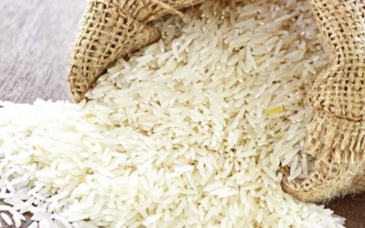 Single brand to strengthen market for fragrant rice